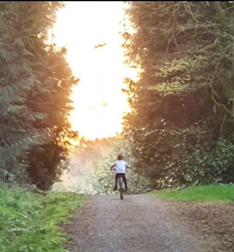Cycling in the woods.jpg
